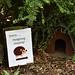 hedgehog corner.....