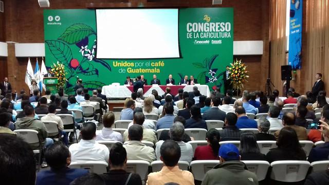 MCD declara proceso de producción del café como Patrimonio Cultural Intangible