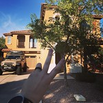Peace out Weaver Circle. You've been my home for the past 8 years and we lived a lot of life here. We helped Ricky heal from his injuries here, we said goodbye to both of our dogs here, we welcomed archer home here, we've had friends come and go from here