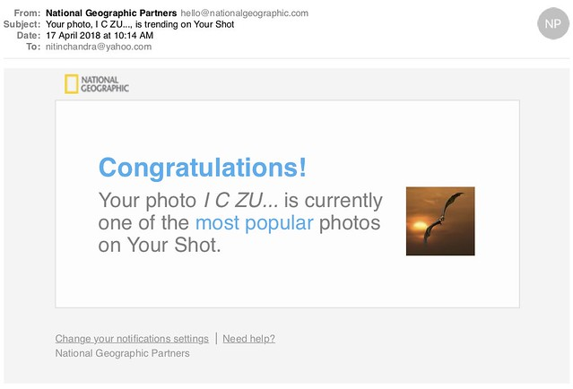 Your photo I C ZU is trending on Your Shot