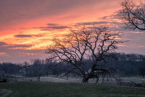 mounthoreb wisconsin unitedstates sun sunset tree clouds color