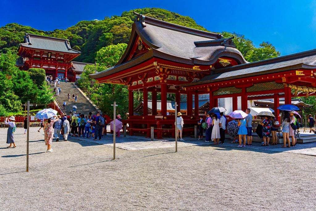 At Tsurugaoka Hachimangu Shrine, Kamakura : 鎌倉・鶴岡八幡宮にて