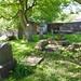 Irvine Old Parish Churchyard (237)