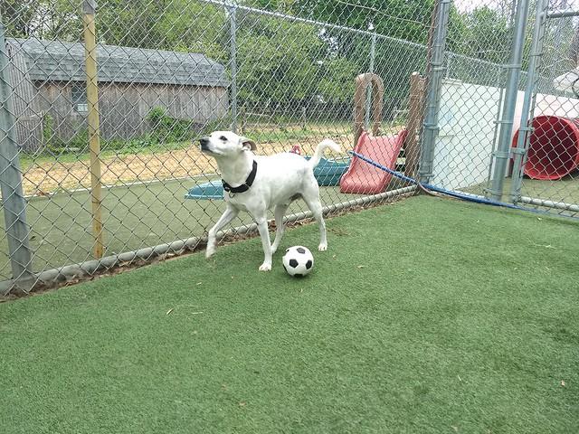 05/06/18 Soccer Play :D