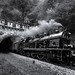 Railway of the Eifel by Eifeltopia