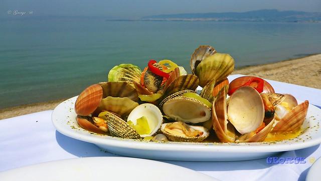 The Best sea food