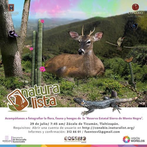 Naturalista. Sierra Monte Negro
