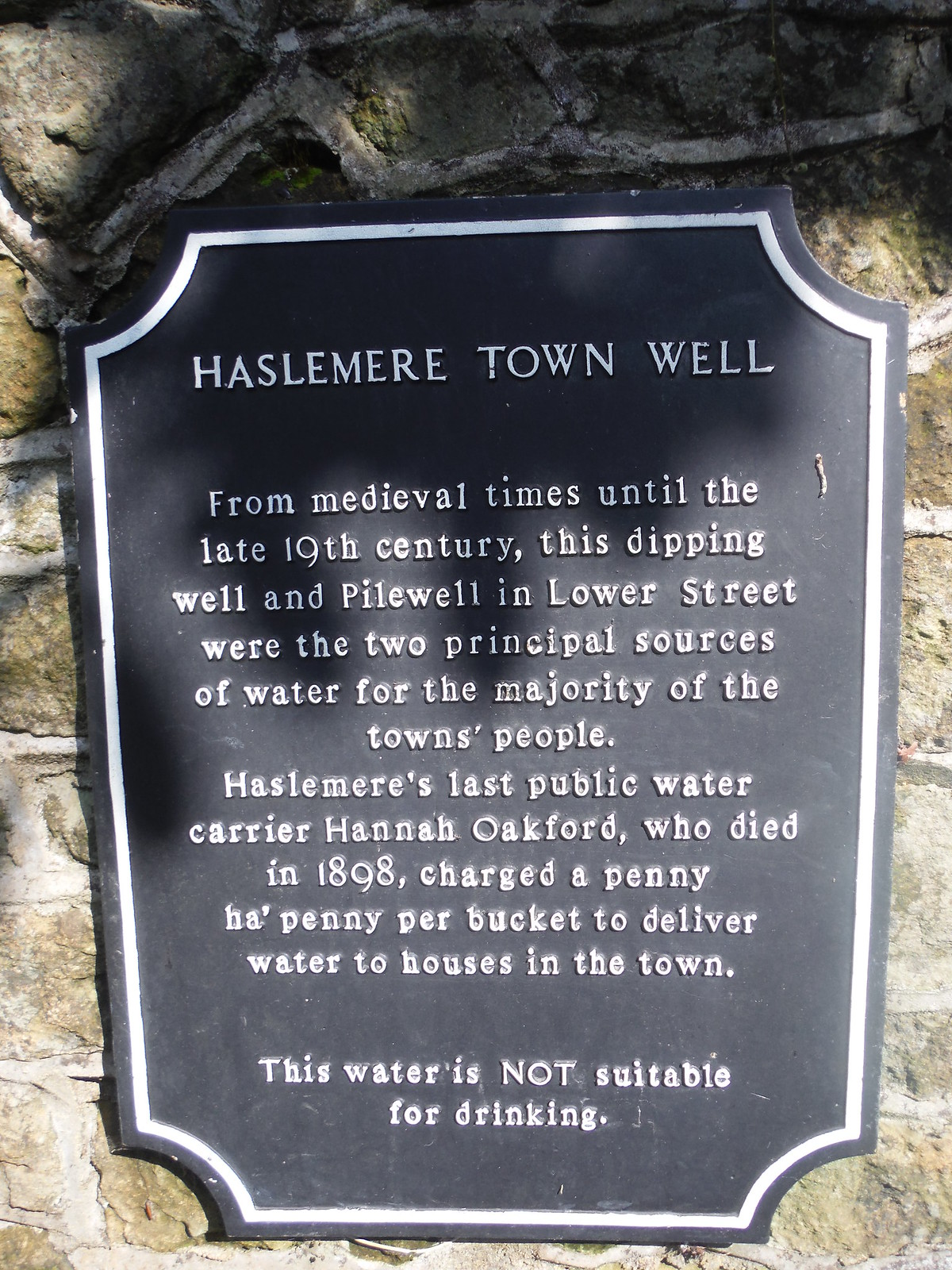 Haslemere Town Well Plaque SWC Walk 48 Haslemere to Midhurst (via Lurgashall or Lickfold)