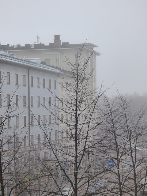 fog in the morning