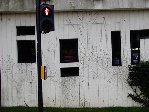 car park ivy traces
