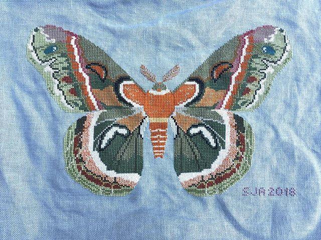 One finished moth! Next up is a Prairie Schooler Halloween piece. #crossstitch #mothystitches