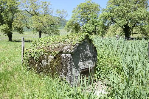 _DSC0849 Ruisseau du Moulin, Concise