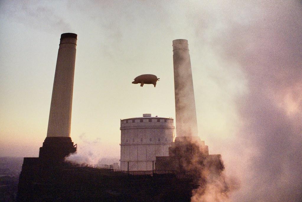 """> Expo Pink Floyd au Macro de Rome : Cochon de """"Animals"""" survolant Battersea Park Station à Londres."""