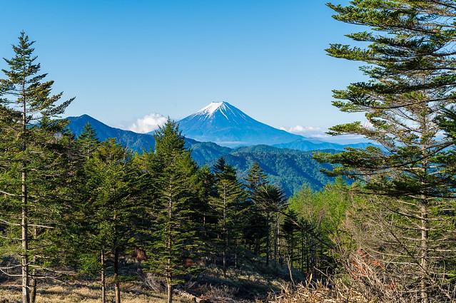 振り返り富士山と大菩薩嶺@牛王院平手前