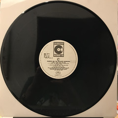 DIAMOND AND THE PSYCHOTIC NEUROTICS:WHAT U HEARD(RECORD SIDE-A)