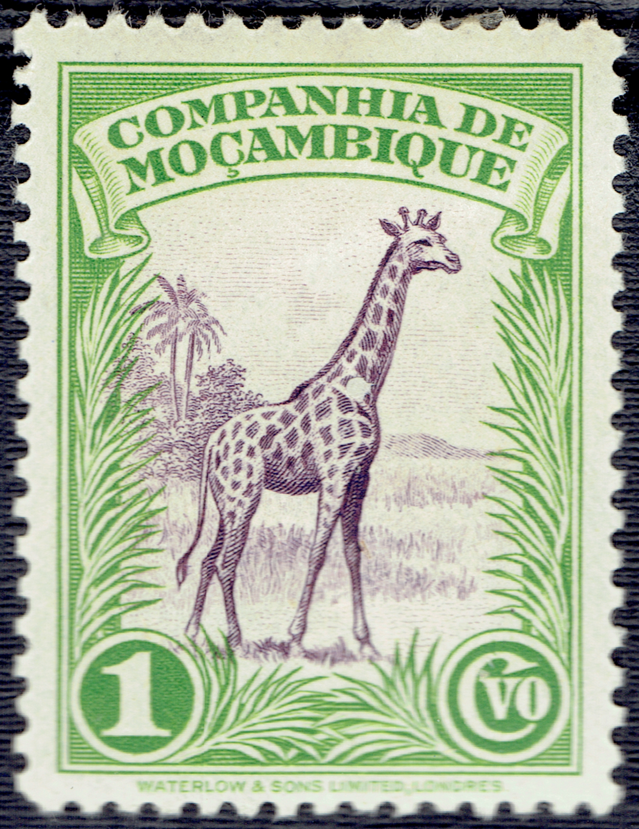 Mozambique Company - Scott #175 (1937)