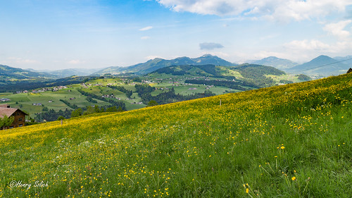 Hike in Austria