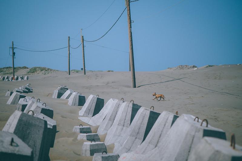 極西沙漠|Taiwan