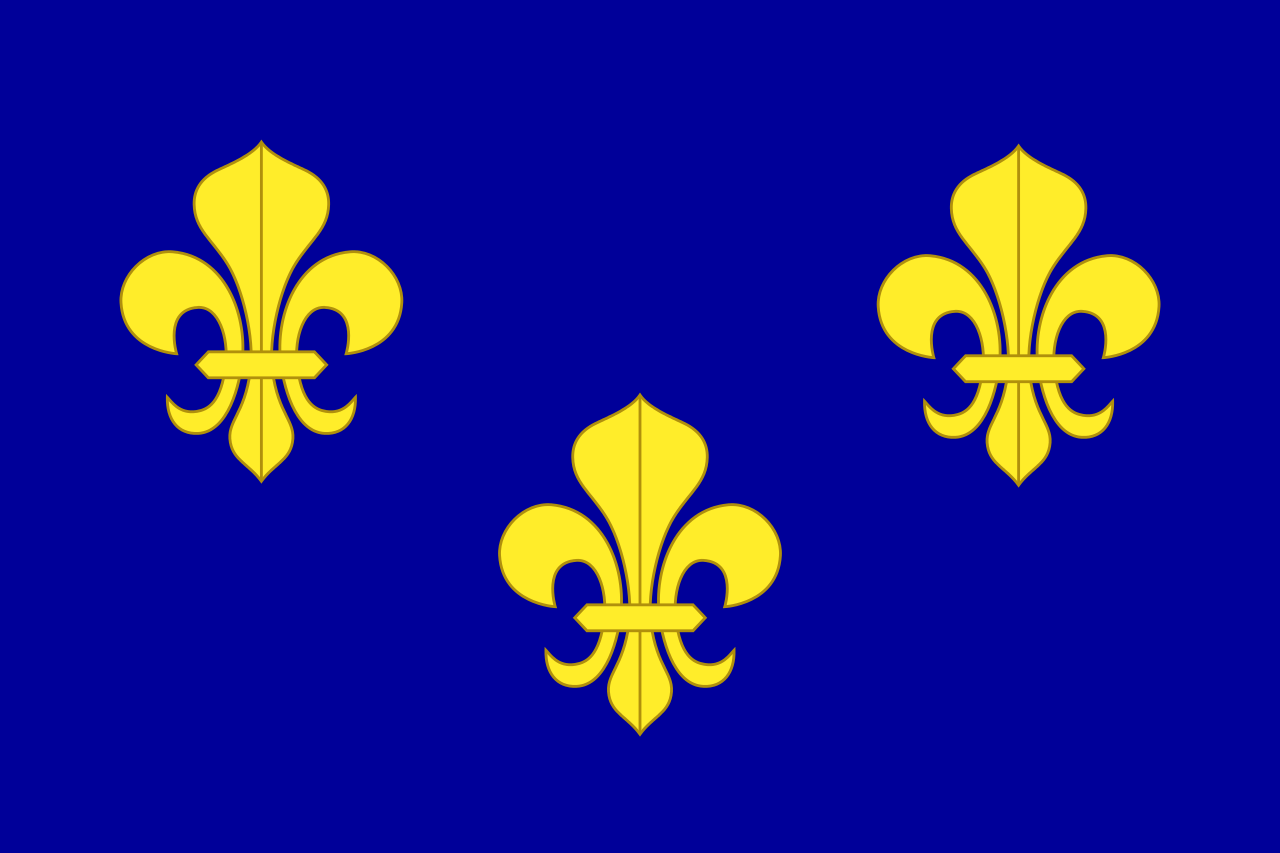 Royal flag of France before the Revolution (heraldic banner of 'France modern')