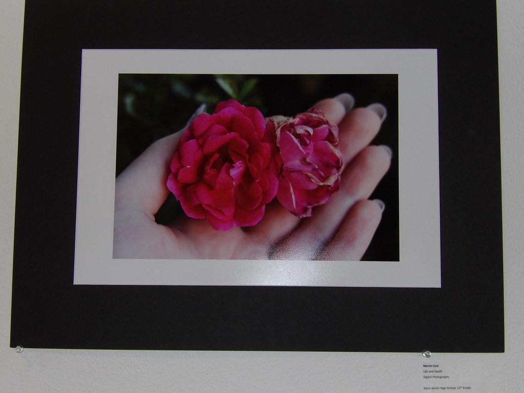 Merrin Casl, Life and Death   KODAK Digital Still Camera