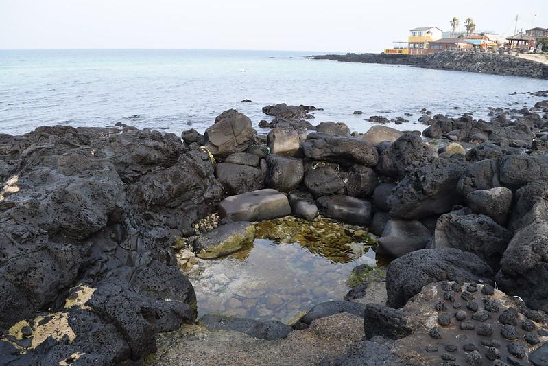 한담해변 (12)