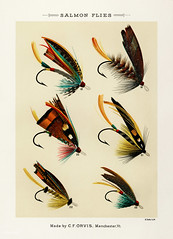Salmon Flies from Favorite Flies and Their Histories by Mary Orvis Marbury. Digitally enhanced from our own original 1892 Edition.