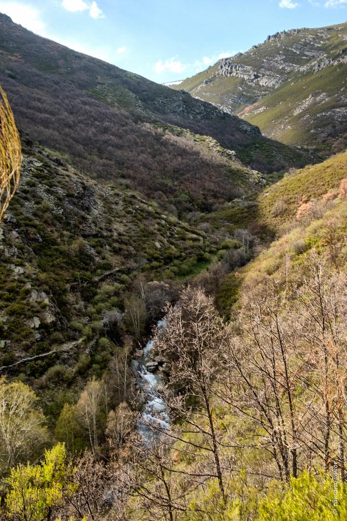 41.- 2018.- Sanábria - Caminhada Vados de San Ciprián (175)
