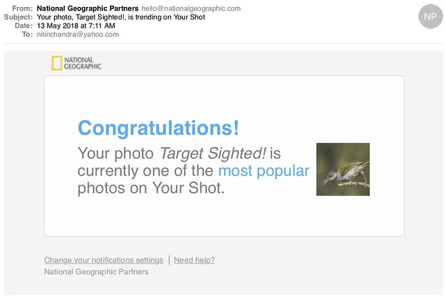 Your photo Target Sighted is trending on Your Shot