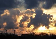 Sunset and Wind Turbines - Cresswell Ponds