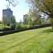 Irvine Old Parish Churchyard (463)