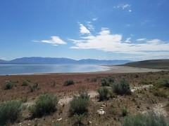scenery at antelope island