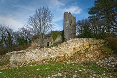 Ain - Château de Jasseron