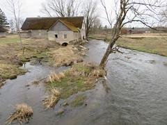 Selja jõgi