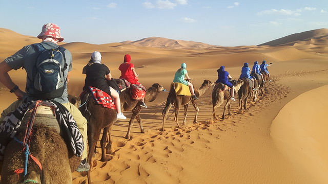 Line of camels carrying people through the Sahara desert, Morocco