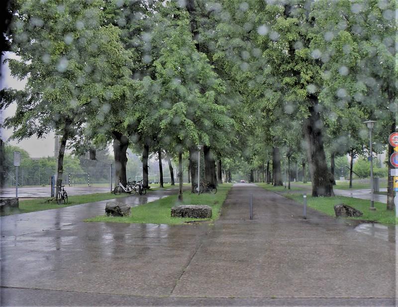 Rain 16.05 (11)