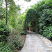 Singapore Botanic Gardens, Holland Village, Singapore
