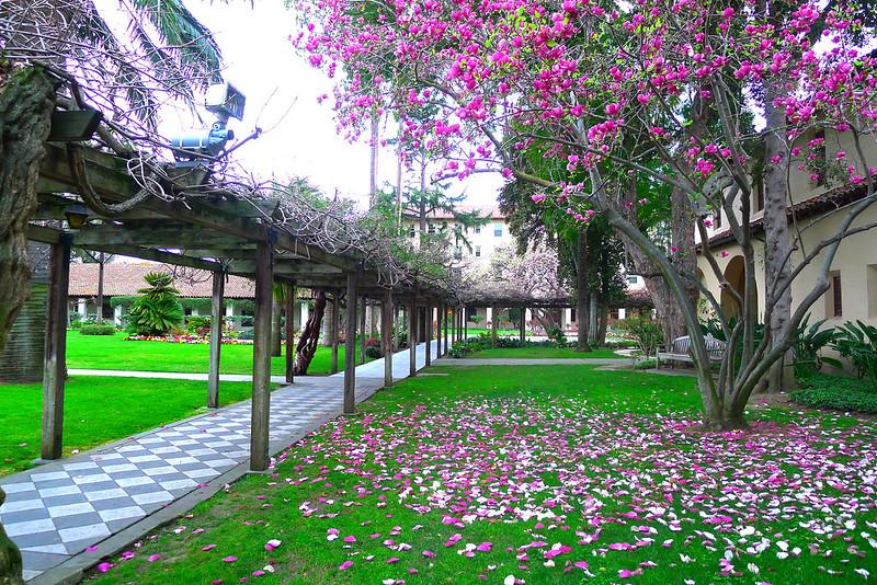Santa Clara University707