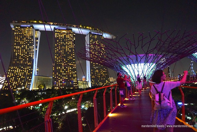 Strolling at Gardens by the Bay OCBC Skyway