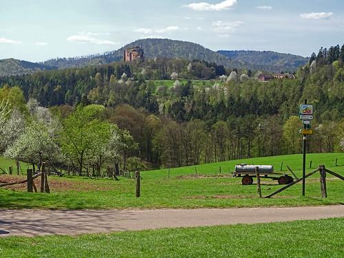 Vue sur le Fleckenstein