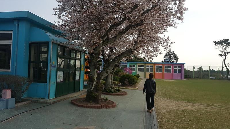 Deoreok School (5)