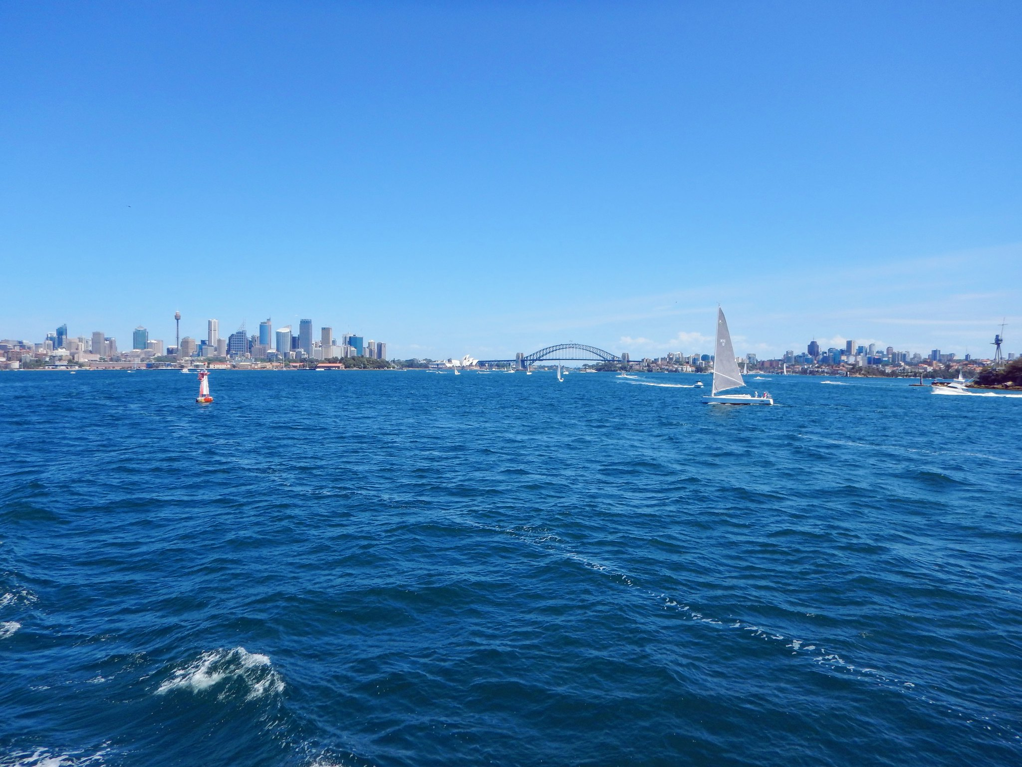 The Sydney bay from the Manley ferry