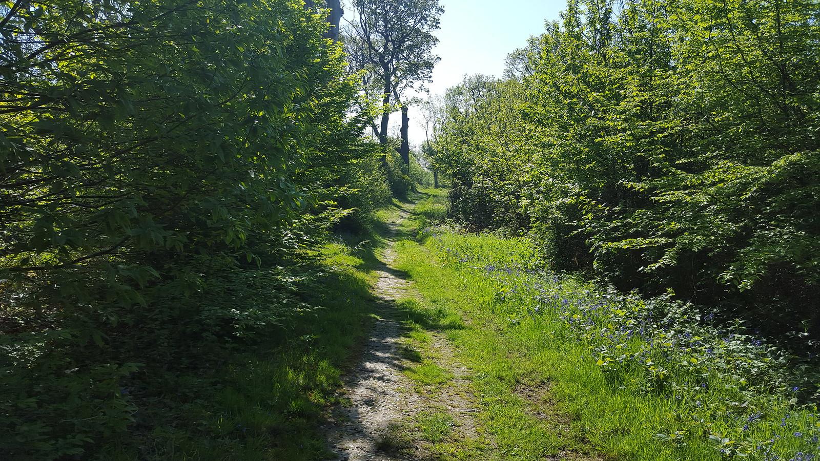 Farningham Road to Eynsford (circular walk from Farningham Road)