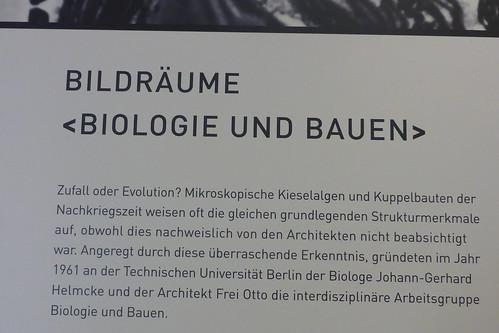 Biologie und Bauen