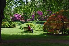 2009-WBYG082_West_Pond_Area_of_the_Old_Westbury_Gardens
