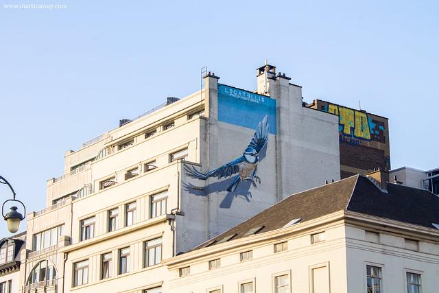 Street art by Steve Locatelli