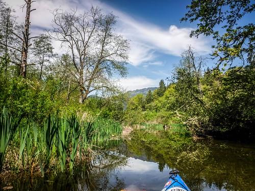 Lake Samish Paddling-85