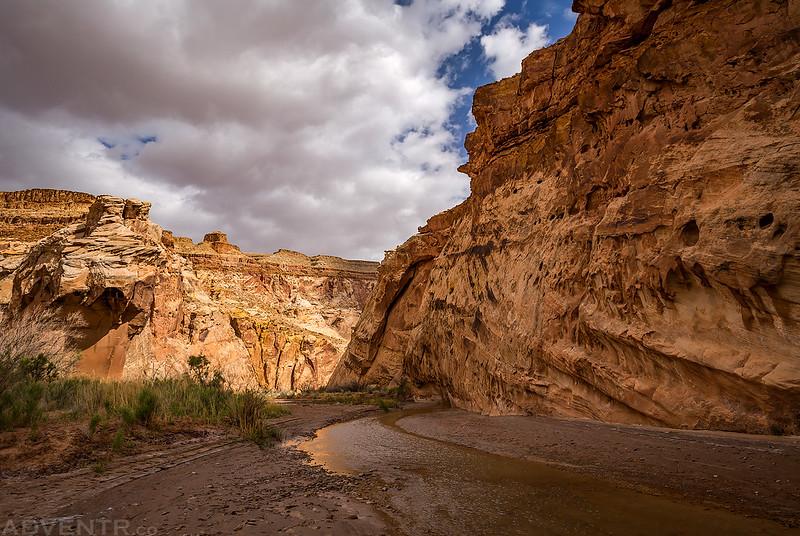 Along The Muddy