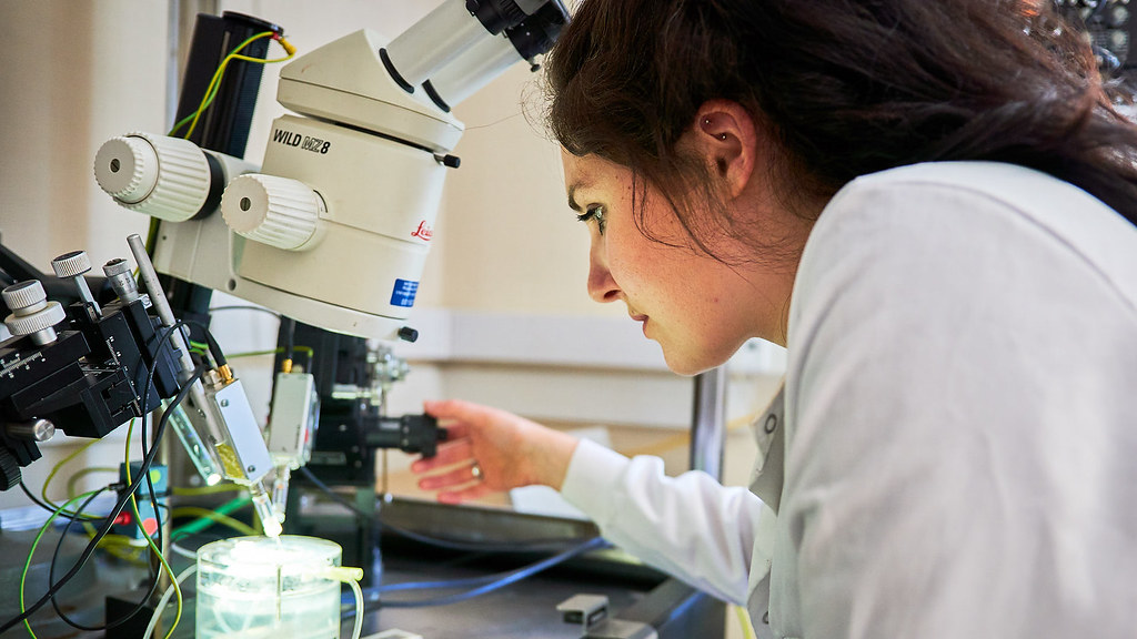 A researcher in a pharmacology lab