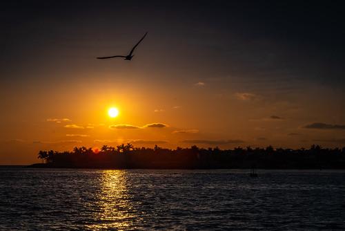 keywest sunset sunsetvision paradise explore inexplore colorful colors evening summer sundown florida vacation holidays naturelover landscape landscapelover nightsky pentax pentaxians earthshot