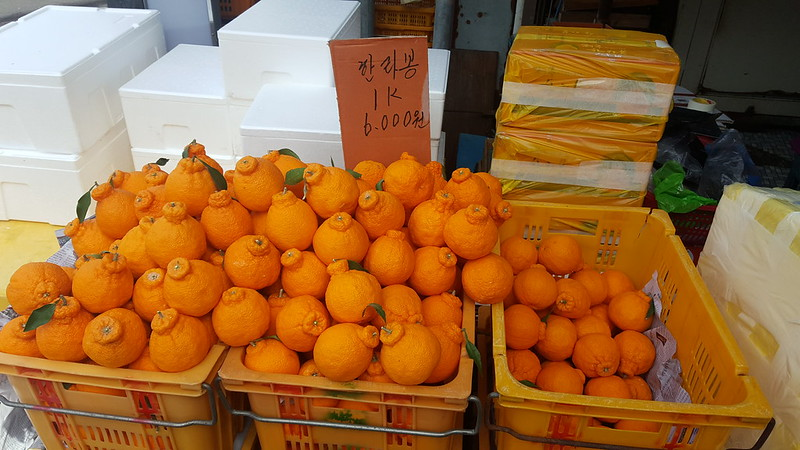 Jeju Market (11)